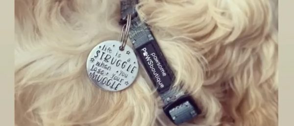 Silver disc dog tags