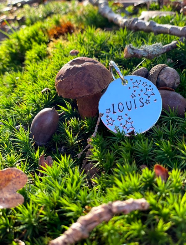 Star tags Bracken and Barkely pet tags